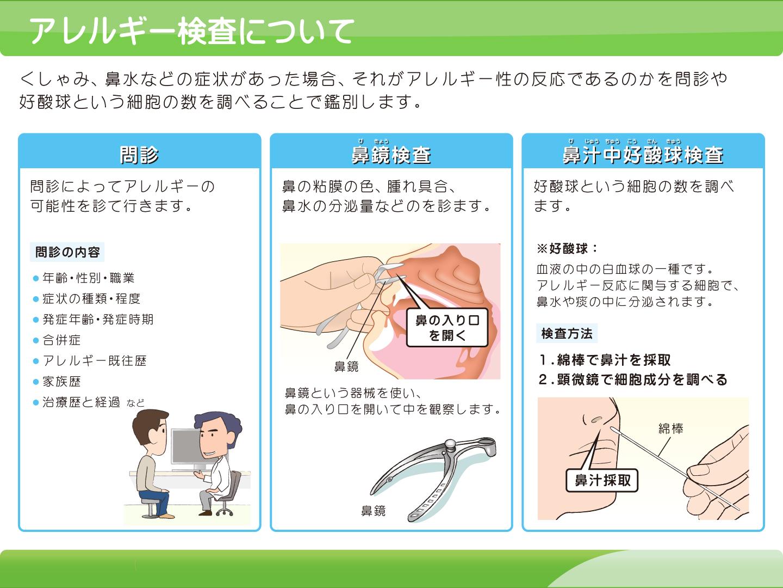 【画像】アレルギー検査について解説